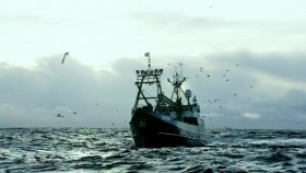 Deadliest Catch S14E05 WEB x264-TBS EZTV
