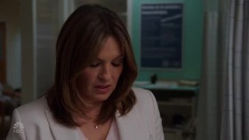 Law.and.Order.SVU.S20E04.XviD-AFG[eztv]