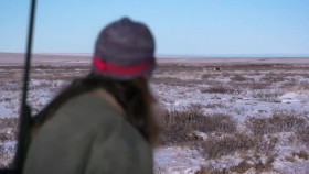 Life Below Zero S14E02 Life and Death WEB-DL AAC2 0 x264-BOOP EZTV
