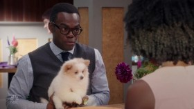 The Good Place S03E06 720p HDTV x264-AVS camillelaurentconseils.org