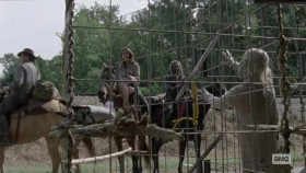 View Torrent Info: The.Walking.Dead.S10E14.WEB.H264-XLF[eztv]