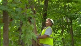 Treehouse Masters S07E08 Zac Browns Space Crab WEB x264-CRiMSON EZTV