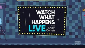 Watch What Happens Live 2019 08 12 Hannah Ferrier and Steve Gold 720p WEB x264-CookieMonster EZTV