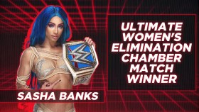 WWE 2021 02 21 The Ultimate Elimination Chamber 720p HEVC x265-MeGusta EZTV